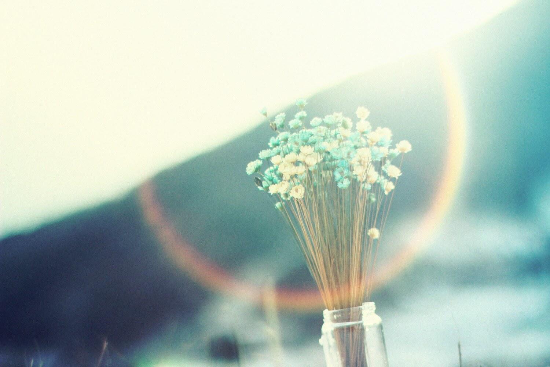 月は清かに空にあり『花を摘むひと』